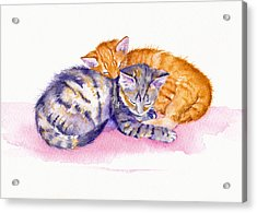 The Sleepy Kittens Acrylic Print by Debra Hall
