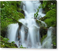 Acrylic Print featuring the photograph The Slithering Mist by DeeLon Merritt