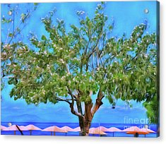 Acrylic Print featuring the photograph The Smiling Tree Of Benitses by Leigh Kemp