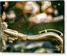 The Snake  Acrylic Print by Steven Digman