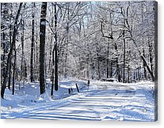 The Snowy Road 1 Acrylic Print