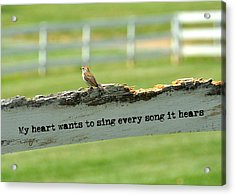 The Sound Of Music Quote Acrylic Print by JAMART Photography