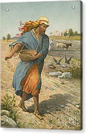 The Sower Sowing The Seed Acrylic Print by English School