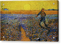 Acrylic Print featuring the painting The Sower by Van Gogh