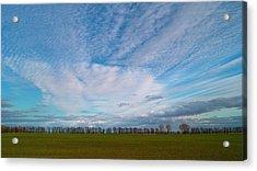 The Springtime Sky. Horytsya, 2010. Acrylic Print