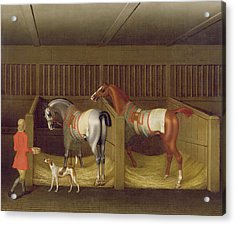 The Stables And Two Famous Running Horses Belonging To His Grace - The Duke Of Bolton Acrylic Print by James Seymour