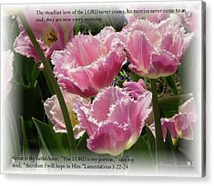 The Steadfast Love Of The Lord Never Ceases... Acrylic Print