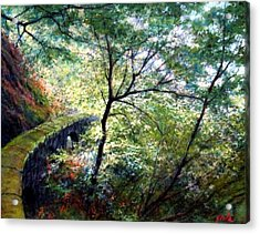 The Stone Wall Acrylic Print by Jim Gola