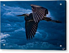 The Stormbringer Acrylic Print by Chris Lord