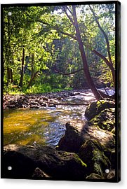 The Stream Acrylic Print