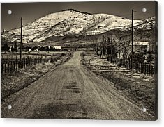 The Street Where Roo Lives Acrylic Print