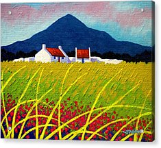 The Sugar Loaf County Wicklow Acrylic Print