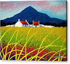 The Sugar Loaf County Wicklow Acrylic Print by John  Nolan