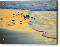 The Sun Is Shining And So Are You Acrylic Print