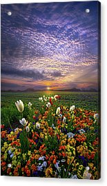 The Sun Just Touched The Morning Acrylic Print by Phil Koch