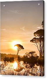 The Sunrise Acrylic Print by Gabriela Insuratelu