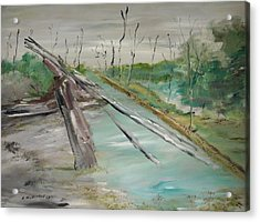 The Swamp Acrylic Print by Edward Wolverton