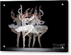 Acrylic Print featuring the photograph The Swan Ballet Dancer by Dimitar Hristov