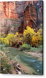The Temple Of Sinawava In Zion National Park Acrylic Print by Pierre Leclerc Photography