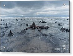 The Tide Comes In Over The Bronze Age Sunken Forest At Borth On The West Wales Coast Uk Acrylic Print