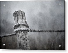 The Tie That Binds Acrylic Print by Scott Norris