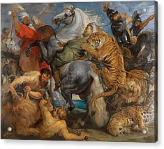The Tiger Hunt Acrylic Print by Peter Paul