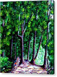 The Trail Acrylic Print by Stan Hamilton