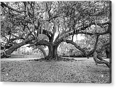 The Tree Of Life Monochrome Acrylic Print