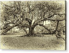 The Tree Of Life Sepia Acrylic Print