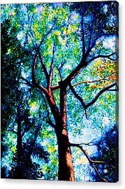 The Tree Acrylic Print by Stan Hamilton