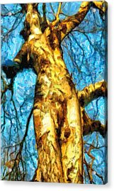 The Tree That Wanted To Be A Woman - Da Acrylic Print