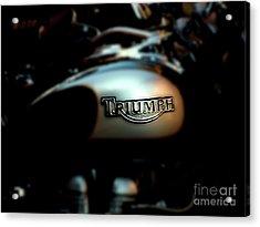 The Triumph Acrylic Print by Steven Digman