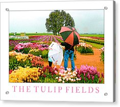 The Tulip Fields Acrylic Print by Margaret Hood