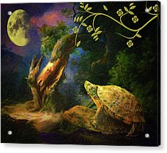 The Turtle Of The Moon Acrylic Print