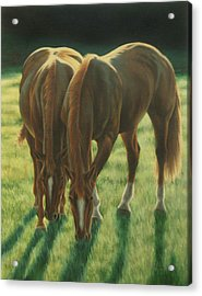 The Twins Acrylic Print by Karen Coombes