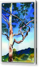 Acrylic Print featuring the painting The Um Gum by Sandra Phryce-Jones