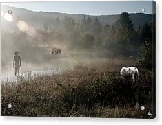 The Unexpected Visitor Acrylic Print