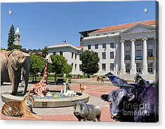 The University Of California Berkeley Welcomes You To The Zoo Please Do Not Feed The Animals Dsc4086 Acrylic Print by Wingsdomain Art and Photography