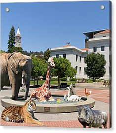 The University Of California Berkeley Welcomes You To The Zoo Please Do Not Feed The Animals Square Acrylic Print by Wingsdomain Art and Photography
