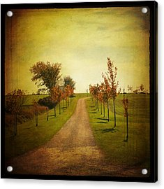 Acrylic Print featuring the photograph The Unknown Path by Joel Witmeyer
