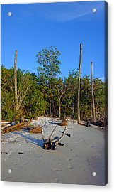 The Unspoiled Beauty Of Barefoot Beach In Naples - Portrait Acrylic Print