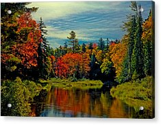 The Upper Branch Of The Moose River Acrylic Print by David Patterson