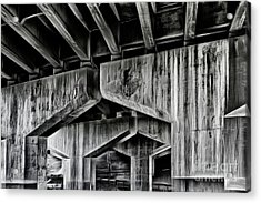 Acrylic Print featuring the photograph The Urban Jungle by Brad Allen Fine Art