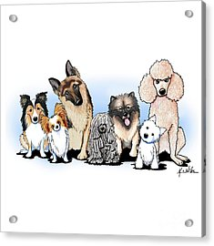 The Usual Suspects 3 Acrylic Print by Kim Niles