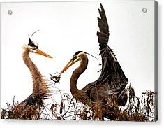 The Valentine's Gift Acrylic Print by Cyndy Doty