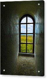 The View Acrylic Print