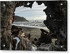 The View From Within Acrylic Print