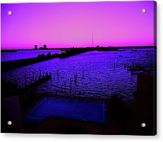 The Purple View  Acrylic Print