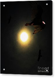 The Vultures Have Gathered In My Dreams . Portrait Cut Acrylic Print by Wingsdomain Art and Photography