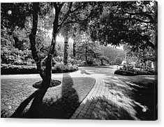 The Walkway Bw Acrylic Print by Lawrence Christopher